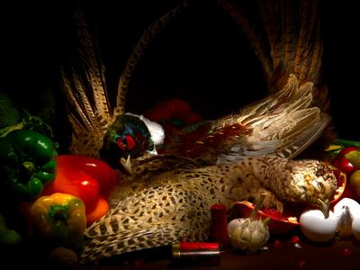 Натюрморт с фазанами. натюрморт, фазаны, световое перо