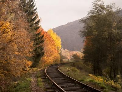 Куда уходит осень... пейзаж  осень  палитра дорога