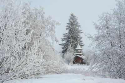 *** север вологодчина зима Онего Ольково
