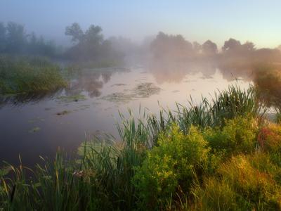 Раннее утро пейзаж природа туман река волчья