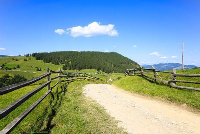 Дорога. дорога Карпаты лето природа