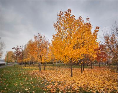 Осень в Марьино