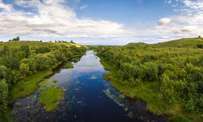 Русло одного из притоков Северной Двины (вариант) пейзаж