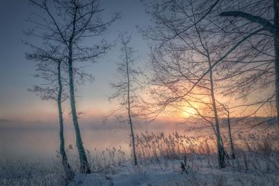 Морозный пар шатура утро пар туман деревья солнце рассвет вода трава мороз холод