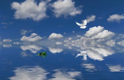 Мир вашему дому символы мира голубь лавровая ветвь небо облака вода отражение peace symbols dove laurel branch sky clouds water reflection