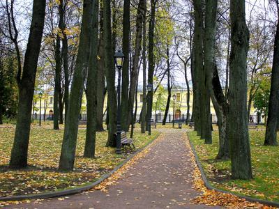Парк парк осень листья