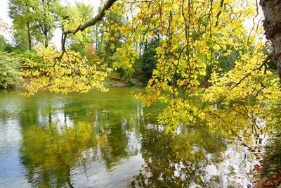 Bois de Boulogne осень
