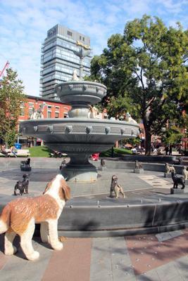 Собачий фонтан. Торонто