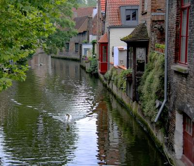 *** и лебеди тихо плывут по каналам... Брюгге каналы путешествие уют лебеди