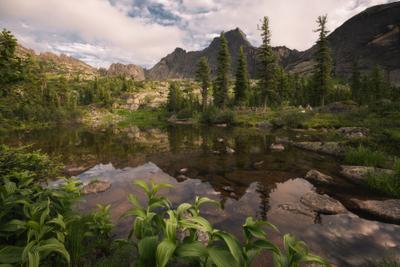 Тишина горного озера Лазурное Саяны Западный Саян июль лето озеро вечер Ергаки ели пихты тайга пейзаж Красноярский край