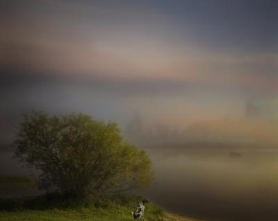 High Нopes (Pink Floyd). Landscape