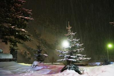 Рождественская ночь Снег Рожжество зима елка