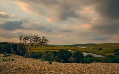 Долина на побережье Дерево галька кусты река облака