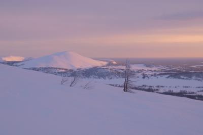 Пионер-гора Печора Коми Приполярный Урал