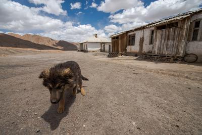 Где-то на перевале Ак Байтал, Восточный Памир