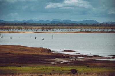 Долина в национальном парке Удавалаве Пейзаж долина озеро горы шри-ланка удавалаве природа