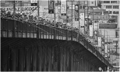 Клюет!))  мост рыбаки клюет много рыба удочка леска толпа