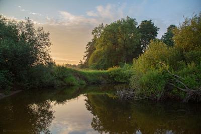 Закатный мёд Тверская область вечер вода закат лето пейзаж природа река