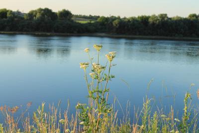 *** река river