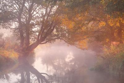 Вспоминаем теплый сентябрь Беларусь Осень Рассвет Река Сентябрь Тишина Туман Уса Утро
