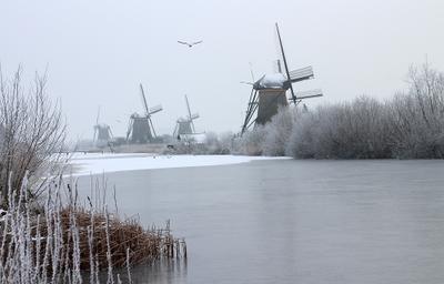 Голландские зимы 2 Kinderdijk Nederland