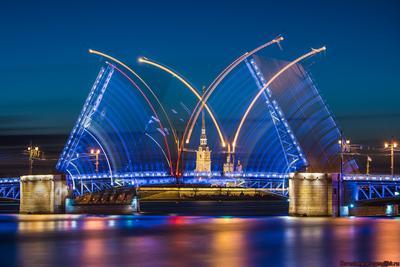 Разводка Дворцового моста разводка Дворцовый мост белые ночи Нева Петропавловка
