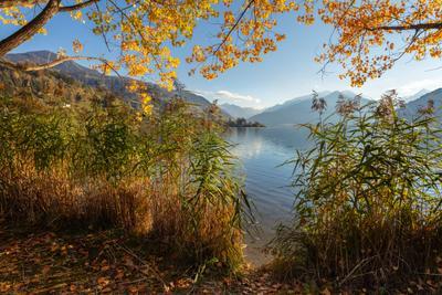 И ОСЕНЬ ПРЕКРАСНА, КОГДА НА ДУШЕ ВЕСНА Австрия озеро Цель Ам Зее осень
