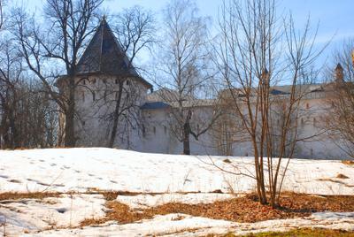 Весна у монастырских стен