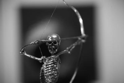 *** смерть скелет цель судьба жизнь