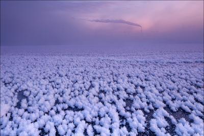 """Из серии """"Среда обитания"""". Поля кристаллов инея на реке Москва в Братеево"""