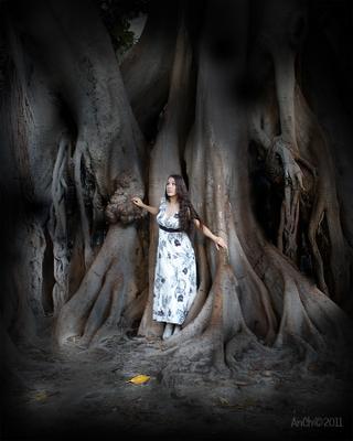 Волшебный лес . девушка дерево