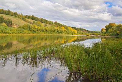 Осень на реке Иня 2 осень Новосибирск река Иня