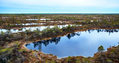 Кемерское болото