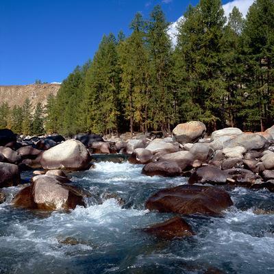 Тайга Тува Монгун тайга река высокогорье