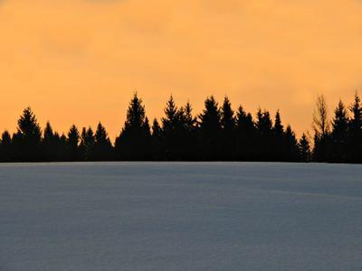 Закат лес закат природа удмуртия