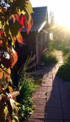 Последний солнца луч осень закат домик в деревне листья дикого винограда