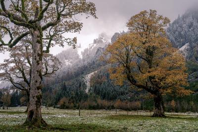 Осень Карвендель