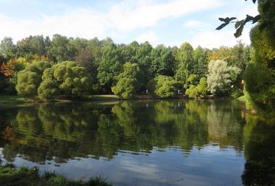 Нарышкинский пруд в Филях