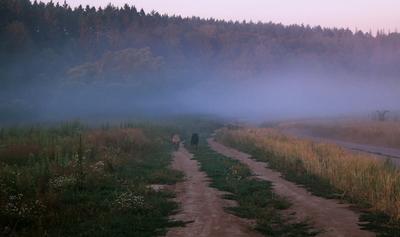 Бегущие в туман