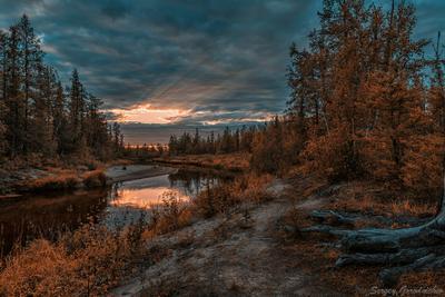 Закат над рекой лес река заполярье ЯНАО Россия пейзаж природа