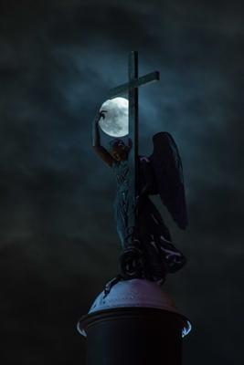 Ангел по имени Данко Питер луна полнолуние Дворцовая площадь Александровская колонна ангел