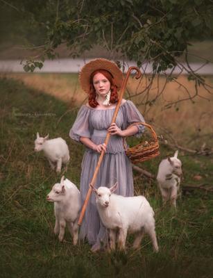 Пастушка Пастушка девушка стало козлята