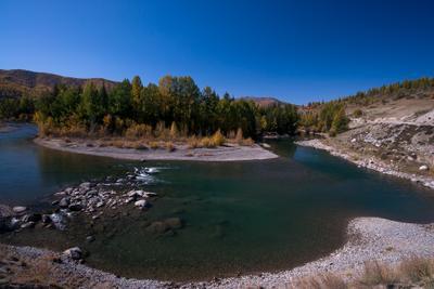 Джазатор в осеннем Алтай Горный осень река Джазатор