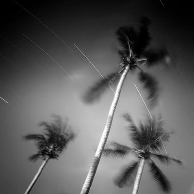 Three palms longexposure thailand kochang palm three