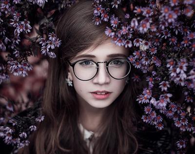 lilac autumn