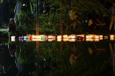 Водные фонарики фонарик ночь Саратов мероприятие фестиваль вода отражение