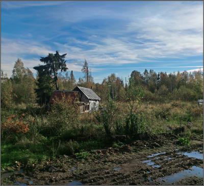 Потонула деревня в ухабинах...