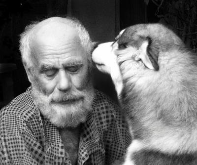 секретики дед собака секрет