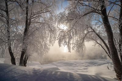 *** Зимнее утро на Бие