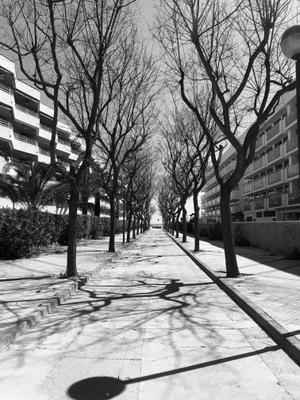 .shadows. spain cambrils shadows spring